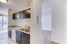 937 N Clarkson Street Unit 306-MLS_Size-014-9-14-1800x1200-72dpi